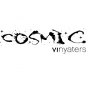 Còsmic Vinyaters